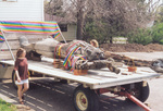 Treeman in color on flatbed