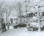 Treeman with Governor Robert Ray