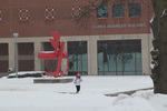 Balanced/Unbalanced Beaks in the snow photo by Sam Castro
