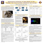 Quantitative Evaluation of Heavy Metals in the Mastodon Tusk Ivory by Atomic Absorption Spectroscopy