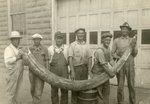 Hampton Mastodon Tusk and the Men who Excavated the Tusk by Iowa State Teachers College