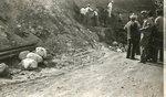 Hampton Mastodon Tusk Excavation Site, Photograph #6 by Iowa State Teachers College