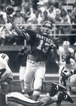 1994 panther quarterback in action