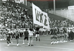 1992 TC carries the flag