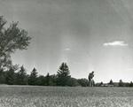 1957 Summer golf