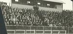 1930s track fans pack wooden bleachers