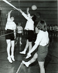 1960s at the net