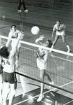1982 at the net by Bill Witt by Bill Witt