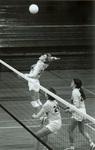 1982 going for the kill by Bill Witt by Bill Witt