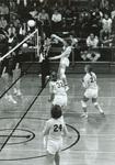1982 net shot by Bill Witt by Bill Witt