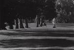 1983 September fairway, UNI golf course by Bill Witt by Bill Witt