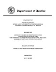 Testimony from Dept. of Justice on ICE conduct during raid
