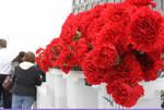 09- Red flowers before march starts by Araceli M. Castañeda