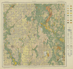 Soil map Wright County 1919