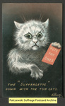 "[189a] The ""Suffragette."" Down with the Tom cats. [front] by Illustrated Postal Card Co."