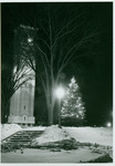 Christmas tree at night 1961