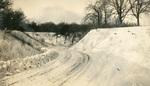 Winter scene at Dolliver Memorial Park 1 (091)