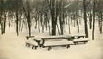 Winter Scene at Dolliver Memorial Park 2 (092)